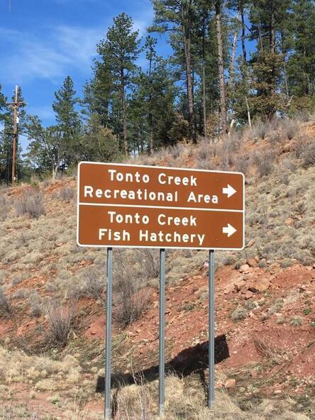 220 W. Zane Grey Cir., Christopher Creek, AZ 85541 Photo 17