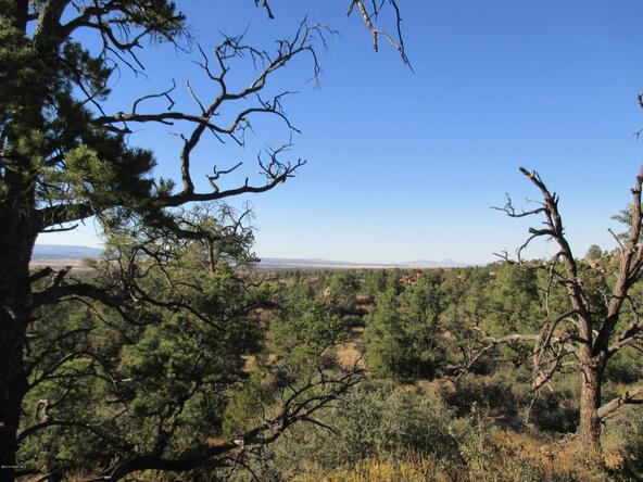 16301 N. Petroglyph, Prescott, AZ 86305 Photo 7