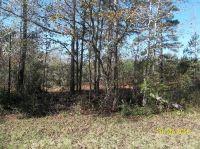 Home for sale: Ll 250 Mann Rd., Shiloh, GA 31826