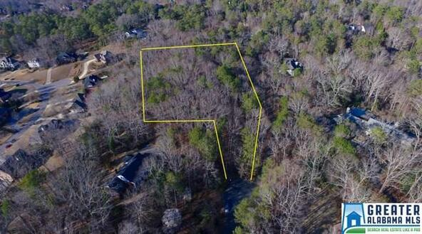 2600 Caldwell Mill Ln., Mountain Brook, AL 35243 Photo 76