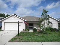 Home for sale: 4713 Tiburon Dr., New Port Richey, FL 34655
