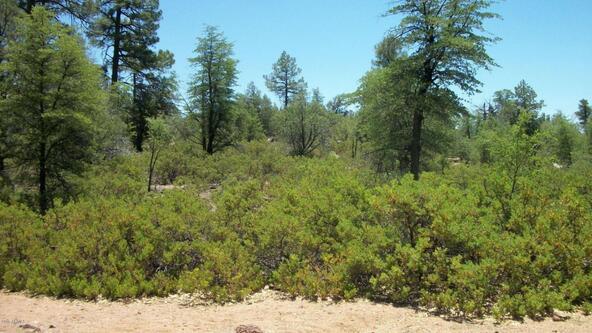 509 N. Chaparral Pines Dr., Payson, AZ 85541 Photo 3