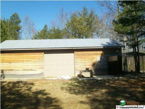 339 County Rd. 245, Fort Payne, AL 35967 Photo 4