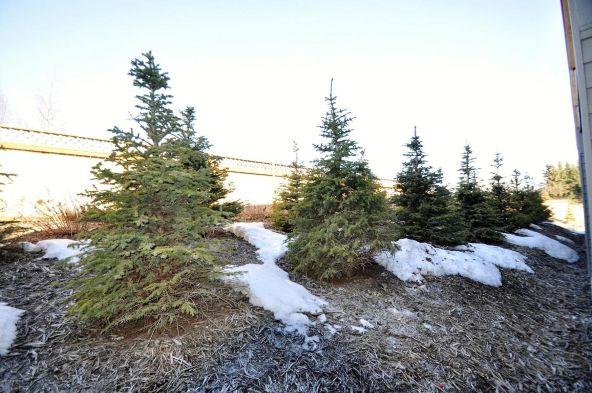 11488 Moonrise Ridge Pl., Anchorage, AK 99516 Photo 32