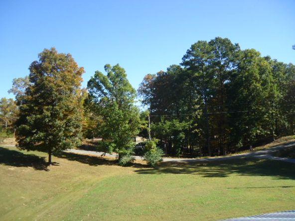 200 Co Rd. 336, Crane Hill, AL 35053 Photo 6