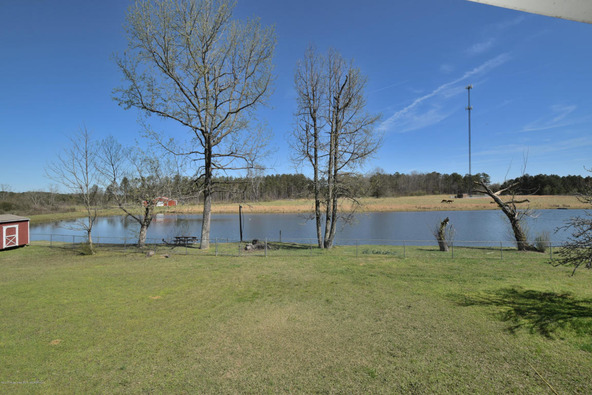 5125 Smith Lake Dam, Jasper, AL 35504 Photo 30