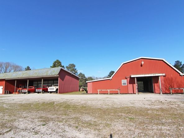 3510 Colburn Mill Rd., Littleville, AL 35653 Photo 24