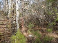 Home for sale: Windhaven Rd., Tbd, Dequincy, LA 70633