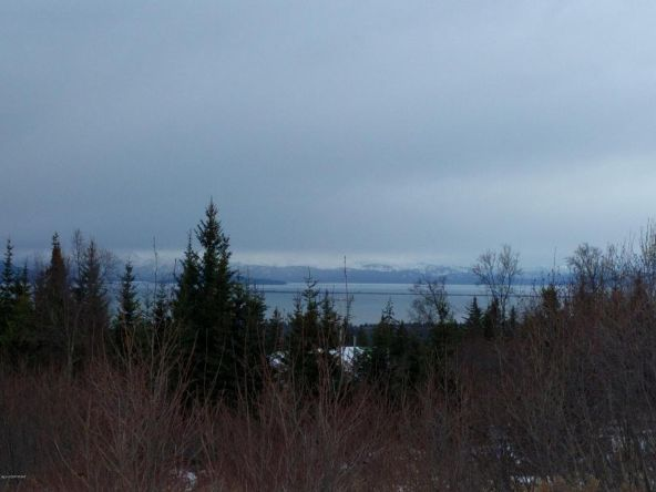 54341 del Urban Ct., Homer, AK 99603 Photo 1