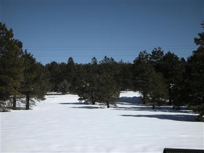 1150 W. Route 66, Bellemont, AZ 86015 Photo 2