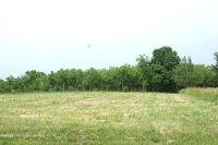 Home for sale: Lot 75 Lake Wildwood Dr., Varna, IL 61375