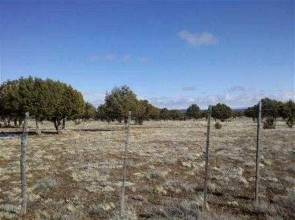5 Or 10 Ac Turkey Lake Rd., Show Low, AZ 85901 Photo 13