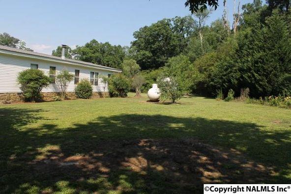 1210 County Rd. 23, Geraldine, AL 35974 Photo 39