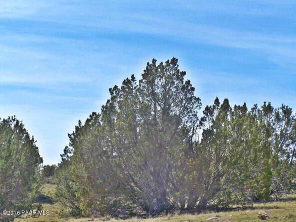 9262 W. Bandera Pass, Williams, AZ 86046 Photo 6
