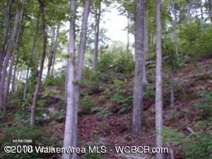 290 Co. Rd.108, Arley, AL 35541 Photo 2
