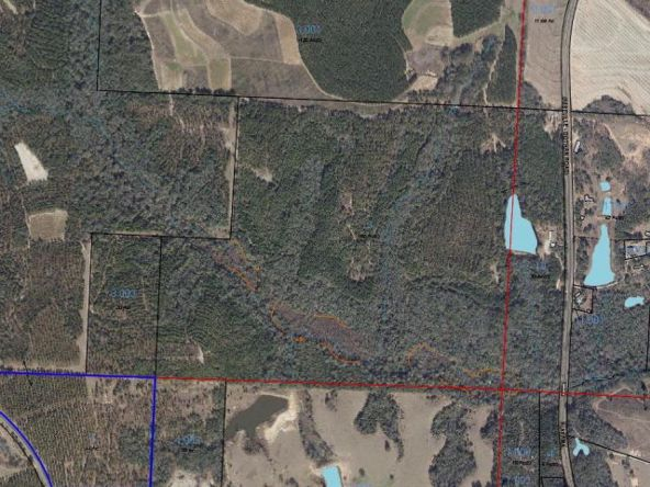 5496 Henry Co Rd. 99, Newville, AL 36353 Photo 2