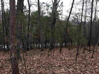 Home for sale: Lot 32 Chestnut Hill Dr., Athens, TN 37303