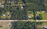 Home for sale: 498 Jill St., Middleburg, FL 32068
