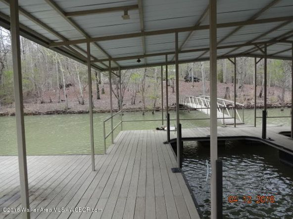 52 Wilderness Ln., Double Springs, AL 35553 Photo 22