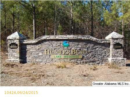 1 Blackberry Dr., Wedowee, AL 36278 Photo 18
