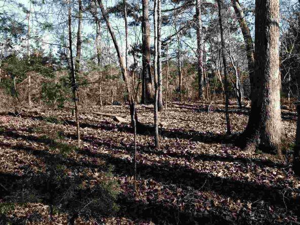 Lakeshore Cir., 67 & 68, Lavonia, GA 30553 Photo 4