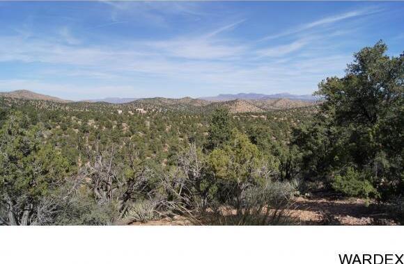 6731 N. Trap Springs Rd., Hackberry, AZ 86411 Photo 27