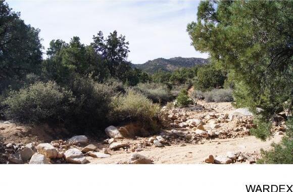 9999 N. Trap Springs Rd., Hackberry, AZ 86411 Photo 29