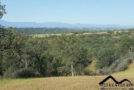 613 Hwy. 36 West, Red Bluff, CA 96080 Photo 29