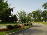 Home for sale: 217 Savannah Dr., Enterprise, AL 36330
