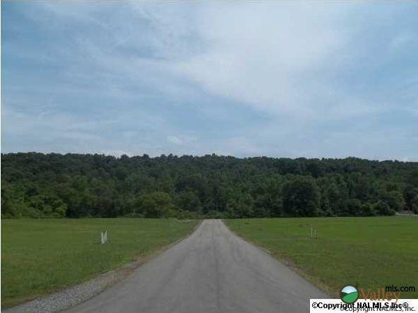 14 Carlton Rd., Scottsboro, AL 35769 Photo 4