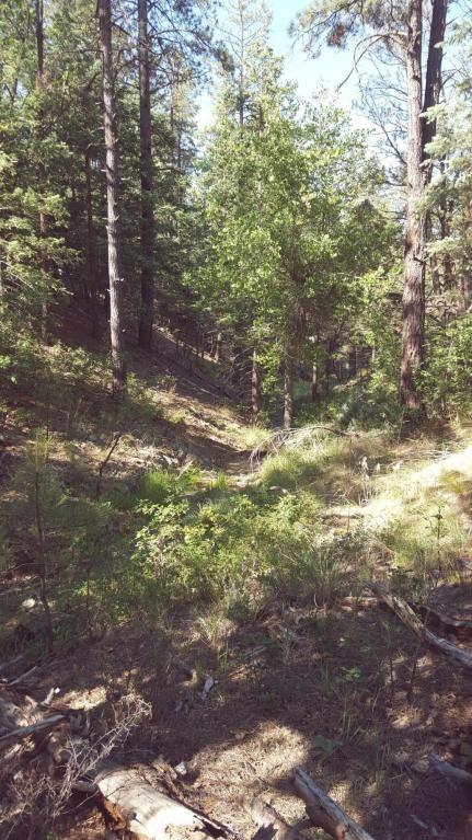 2655 E. Preddy, Prescott, AZ 86305 Photo 8