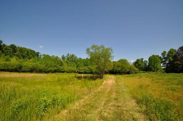 445 County Rd. 1301, Cullman, AL 35058 Photo 12