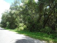 Home for sale: 72 Ct., Chiefland, FL 32626