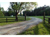 Home for sale: 9105 Klondike Rd., Worden, IL 62097