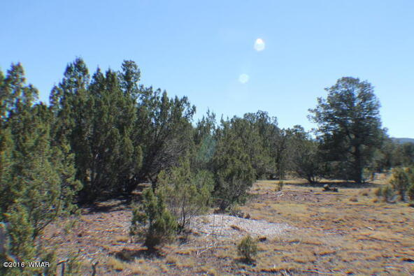 8 Acres Off Of Acr N. 3114, Vernon, AZ 85940 Photo 16