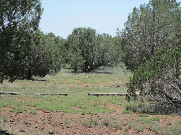 3328 N. Hillside Rd., Ash Fork, AZ 86320 Photo 52