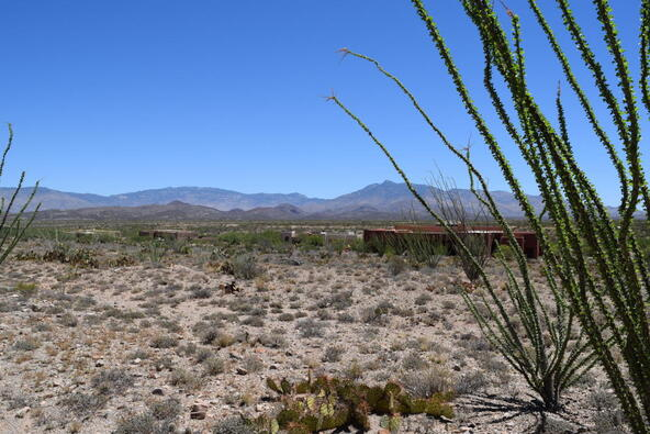 14449 E. Sands Ranch, Vail, AZ 85641 Photo 2