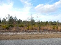 Home for sale: Lot 74 Liberty Ct., Jesup, GA 31545