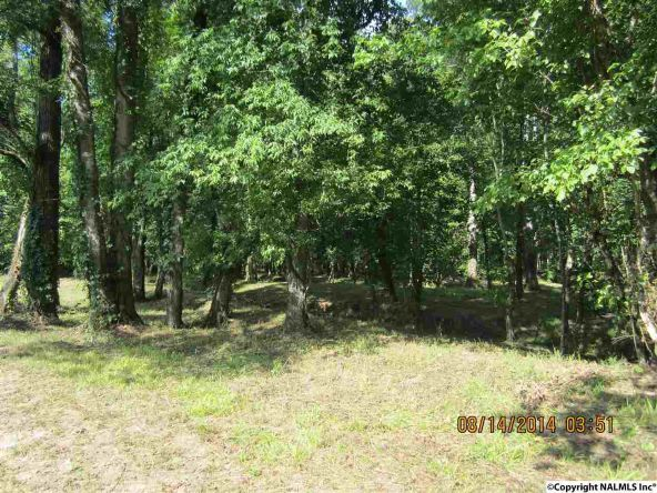 1865 County Rd. 99, Gaylesville, AL 35973 Photo 3