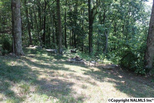 20021 County Rd. 89, Mentone, AL 35984 Photo 10