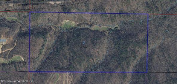 County Hwy. 12, Hackleburg, AL 35564 Photo 5