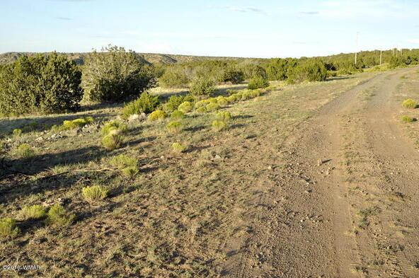 199.54 Acres, Concho, AZ 85924 Photo 15