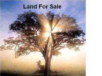 Home for sale: Hazel, Port Barre, LA 70577