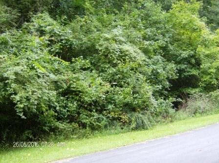 309 Corey Ct., Macon, GA 31220 Photo 5