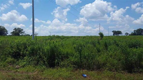 Tbd County Rd. 40, Coffee Springs, AL 36318 Photo 4