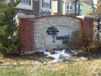 Home for sale: 22461 Saint Francis St., Spring Hill, KS 66083