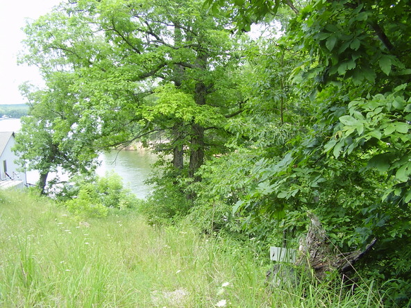 1-2-3 Seawall Dr., Climax Springs, MO 65324 Photo 7