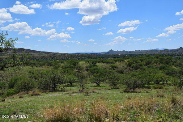 99 Crosscreek, Patagonia, AZ 85624 Photo 9