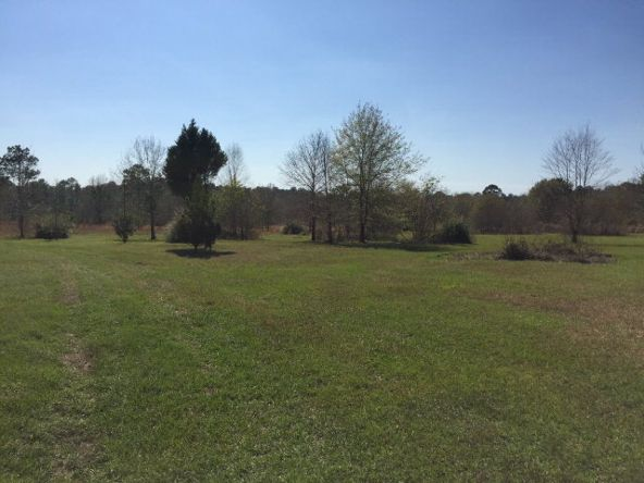 25284 Coopers Cem Rd., Robertsdale, AL 36567 Photo 3