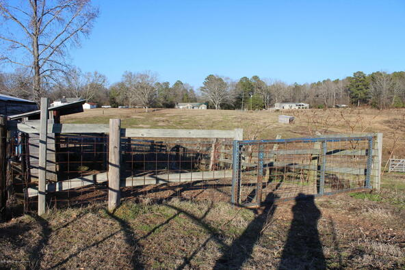 3601 Brookside Rd., Brilliant, AL 35548 Photo 34